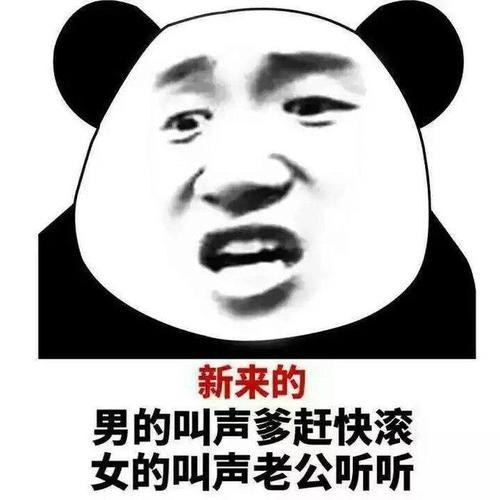 金馆长熊猫捂脸表情_熊猫头高清 - 趣表情,一个充满欢乐的表情包乐园