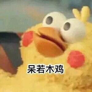 呆鸡表情包