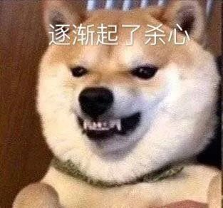 狗子系列表情包