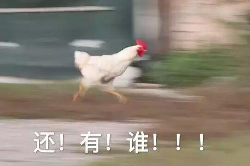 奔跑鸡表情包
